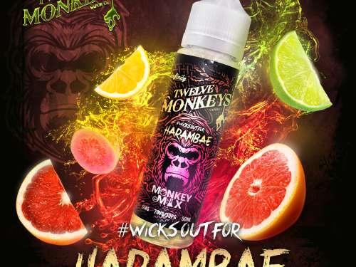 TWELVE MONKEYS - HARAMBAE Shake and Vape 50ml-388