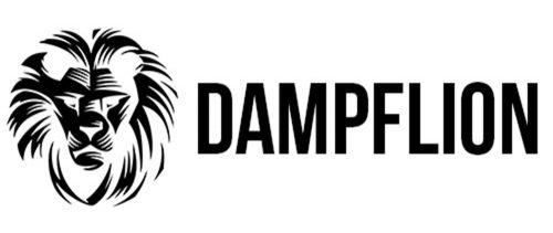 Dampflion/checkmate