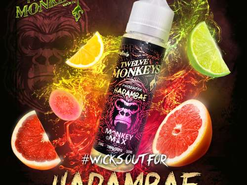 TWELVE MONKEYS - HARAMBAE Shake and Vape 50ml-388